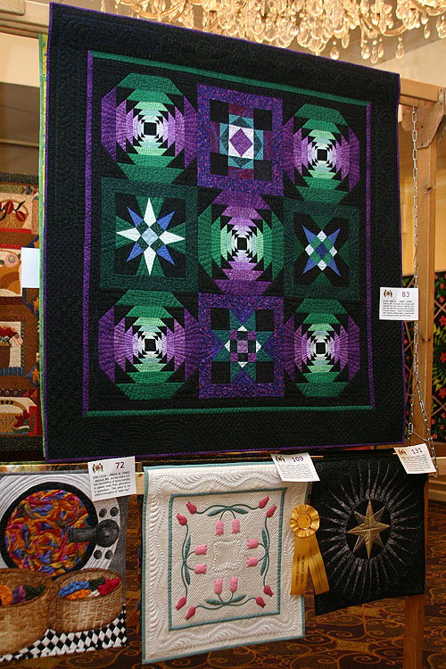 Dianes quilts hanging at The Quilters Gathering, 2009